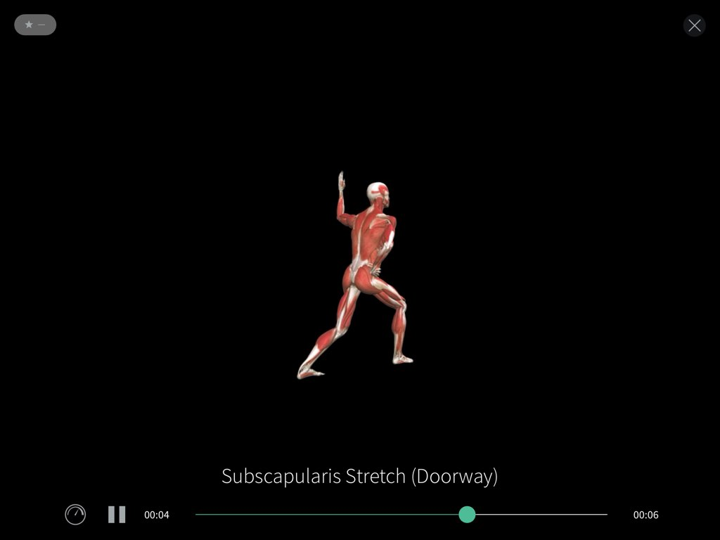 Subscapularis stretch video in Complete Anatomy